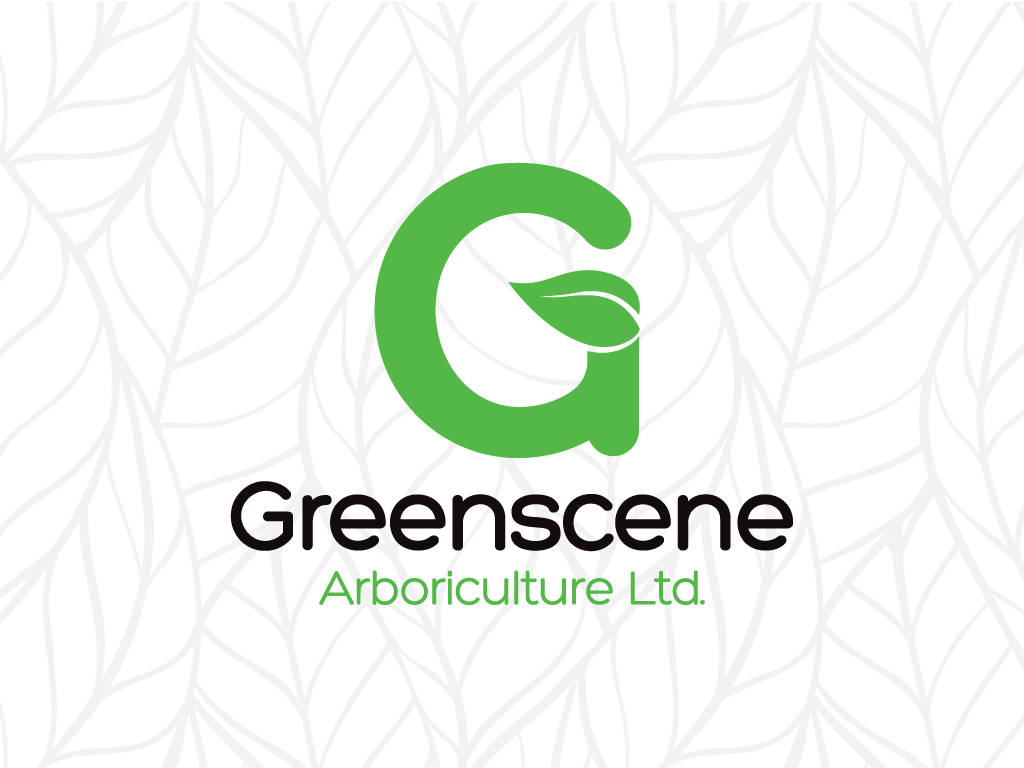 Graphic Design Portfolio - Greenscene Arboriculture - Logo Design